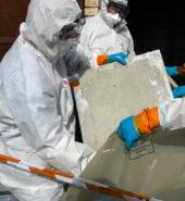 Faragon Restoration Environmental Services, Asbestos Abatement
