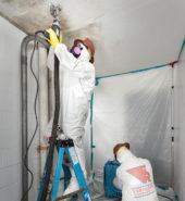 Faragon Restoration Ltd. Environmental Services, Mold Containment